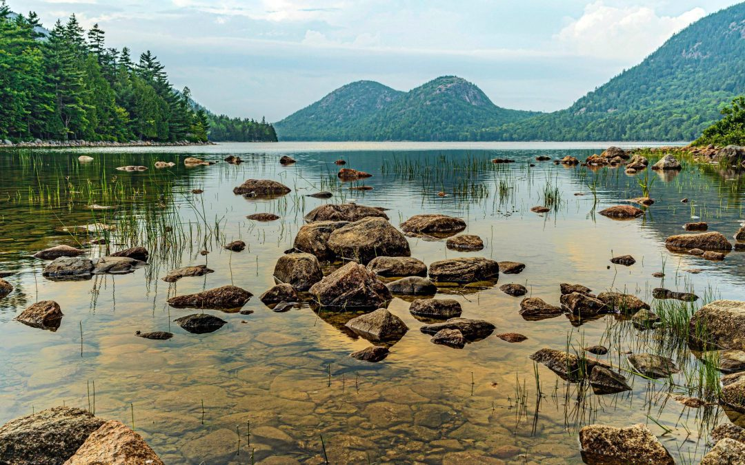 10 Amazing Campgrounds in Acadia National Park